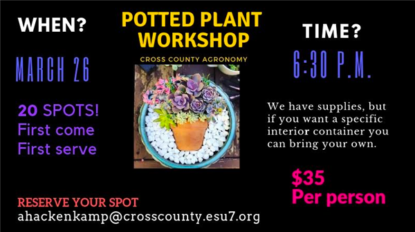 Potted Plant Workshop
